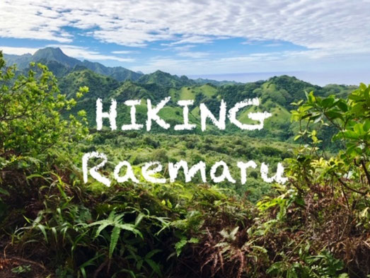 Hiking Raemaru, Hike Raemaru, Raemaru Rarotonga, activities in Rarotonga, Free things to do in Rarotonga,