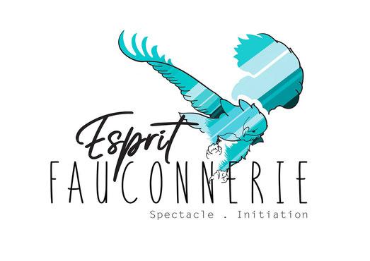 Esprit Fauconnerie -Spectacle et Initiation à la fauconnerie - © Tous droits réservés