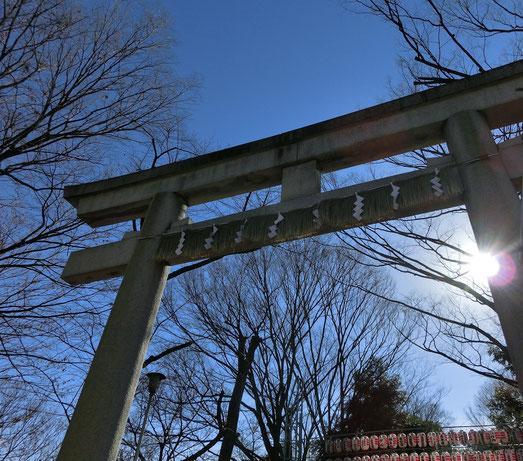 1月3日(2013) 新春の大國魂神社大鳥居(府中市)