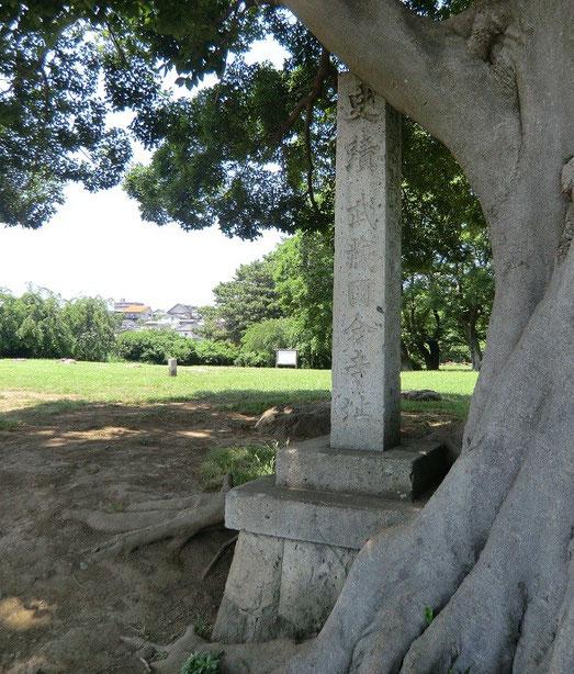 ●史跡武蔵国分寺址:飛鳥(奈良)に似た空気感がある、静かで、時間が止まっているような場所