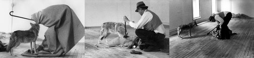 Biographie - Inspiration - Joseph Beuys, I like America and America likes me