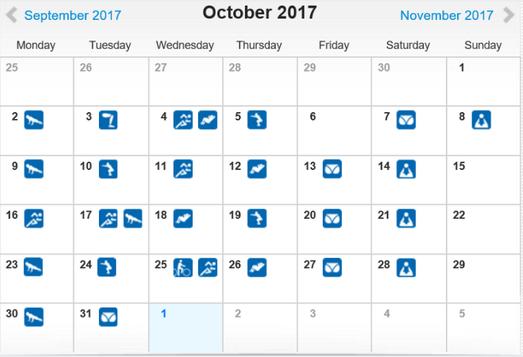 freaky routine, tägliche Übungen, Projekt 100, runtastic, Statistik Oktober 2017