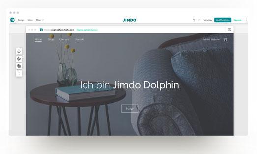 Jimdo Creator oder Jimdo Dolphin? Was ist der richtige Jimdo-Baukasten für dich? Hier findest du eventuell eine Lösung!