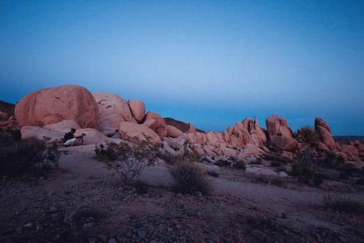 Gedanken zum Tod, Joshua Tree National Park, Mondlandschaft