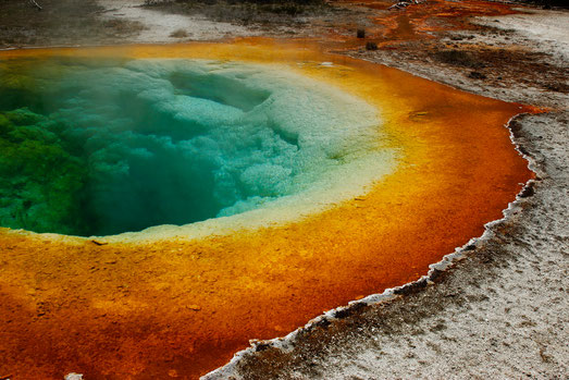 The Morning Glory Pool in the Upper Geyser Basin