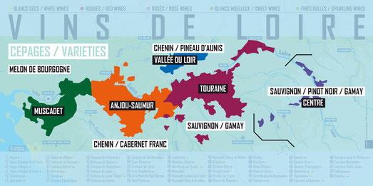 VinoLoire - Vincent Delaby - carte des cépages du Val de Loire ©InterLoire
