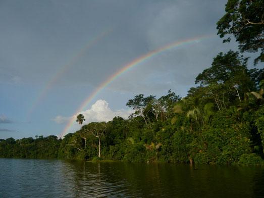 Dschungeltour in Peru, Iquitos mit PERUline oder BOLI`VIENline