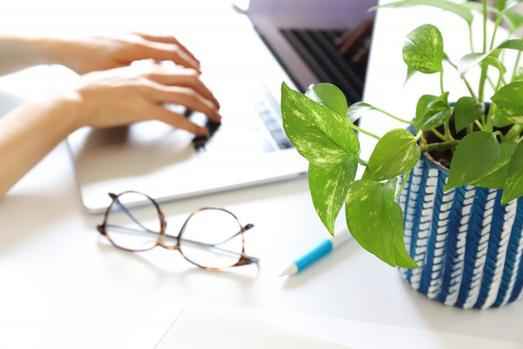 ノートパソコンの前でノートを広げてボールペンでメモをとる指先。鉢植えの観葉植物。コーヒーの入った白のマグカップ。眼鏡。