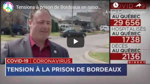 May 3rd TV news on the situation in the detention center of Montreal, Prison de Bordeaux, the largest provincial prison of Quebec