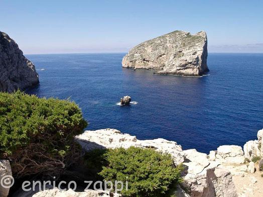 L'isolotto Foradada a fianco del promontorio di Capo Caccia, quasi di fronte all'ingresso delle Grotte di Nettuno.