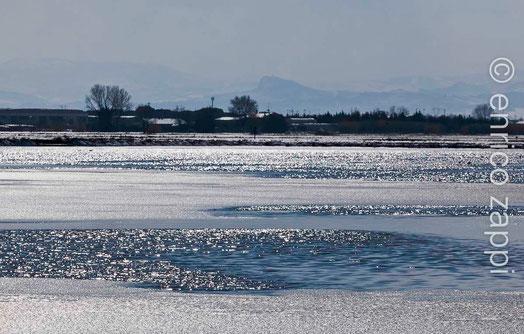 Inverno alle Saline, ammirando un velo di ghiaccio sul pelo dell'acqua ai piedi del Monte Titano.