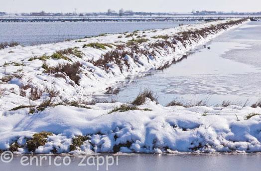 Sotto la neve di febbraio