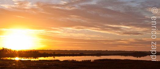 Il tramonto, uno degli spettacoli della Natura più affascinanti, racchiude in sè un'atmosfera e una suggestione che si rinnovano quotidianamente, sempre in modo diverso. Piallassa della Baiona (RA)
