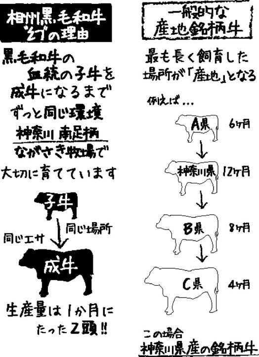 相州和牛が幻の理由