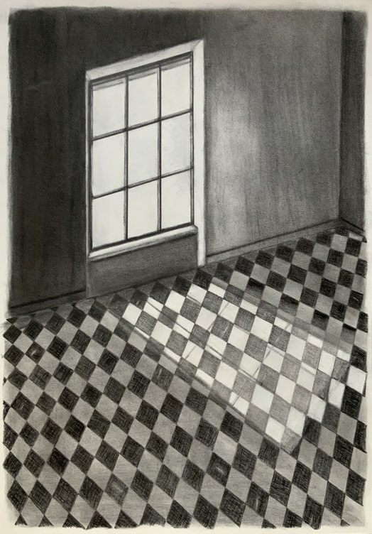 """""""Licht und Schatten"""", Bleistift auf Fabriano Satinata,30,5 x 45,5 cm"""