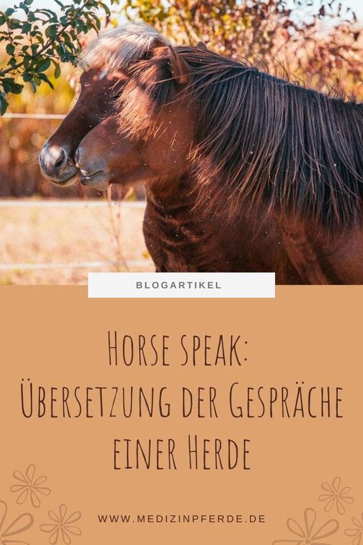 Horse Speak Kurs mit Kirsti Ludwig, Pferdesprache lernen nach Sharon Wilsie