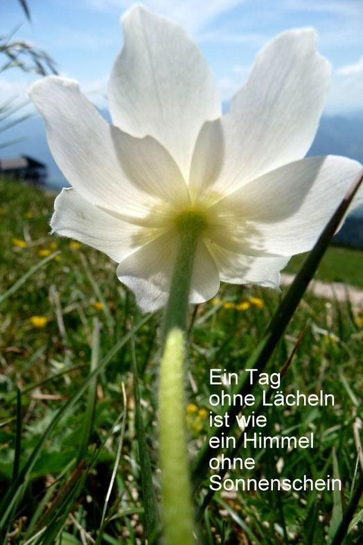Bild und Text Hermann Lahm (Bruder von M. Boßle)