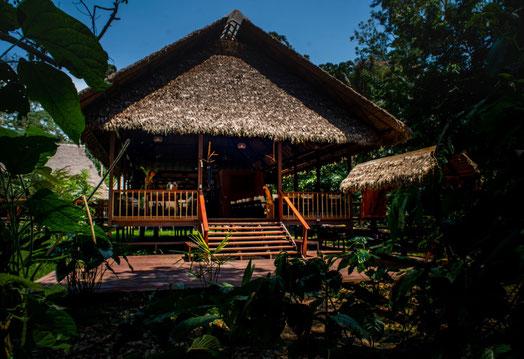 Regenwald Touren mit PERUline, Puerto Maldonado