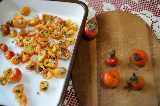 ハマナスの実と種 photo:kimidori