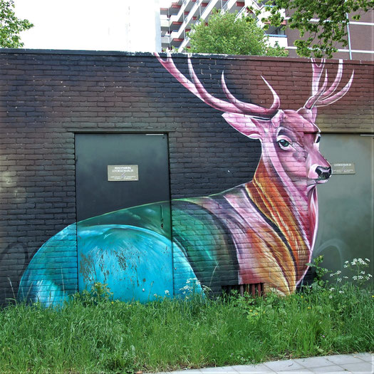 Dopie - Arnhem 2021 / ©street-a-tag