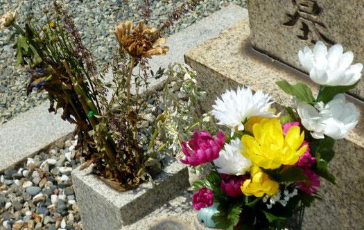 左のドライフラワー状に対し、右手前の「造花」は色鮮やか