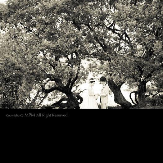 結婚式 前撮り 滋賀 おすすめ
