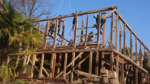 小屋組みの松梁の次は、外周の桁梁から解していく。複雑な順番で組まれていたため手間取った。