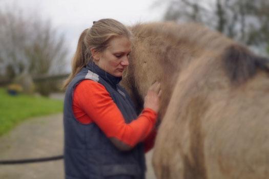 Osteopatische Behandlung eines Pferdes