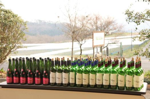 2日間の新植祭で空いたTETTAワイン。ベリーA、メルロ、シャルドネ、MBAスパークリング、しめて88本だそうです。
