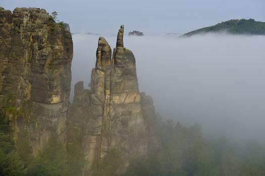 Affensteine, Blick zur Brosinnadel, Falkenstein im Nebel