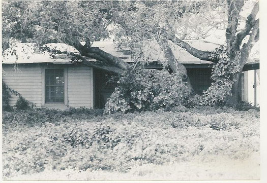 The guesthouse where Avatar Meher Baba greeted visitors during His August 2, 1956 visit. This view shows the side near the driveway. (Archive photo.)