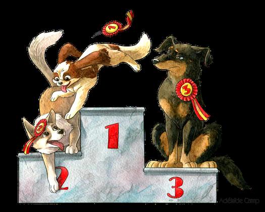 Illustration toutes races pour Dog'N'Co Education canine, Conseil comportemental, Médiation animale à Langres et alentours