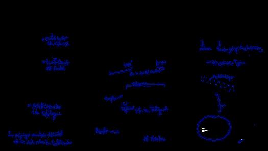 Tafelbild das die Eigenschaften der drei Biomoleküle Kohlenhydrate, Lipide und Polypeptide visualisiert