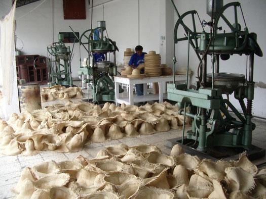 Panamahüte kommen aus Ecuador