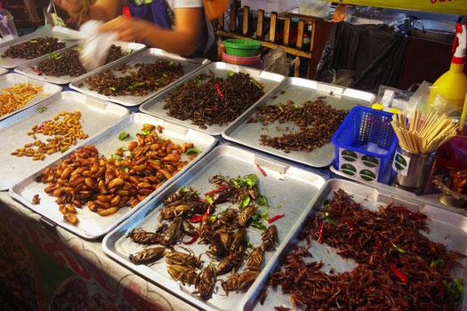 Insekten gelten als Delikatesse