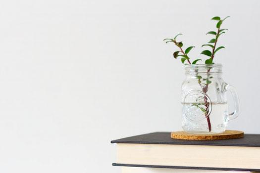 広げられた書籍の上に置かれた眼鏡。コーヒーの入ったマグカップ。観葉植物。
