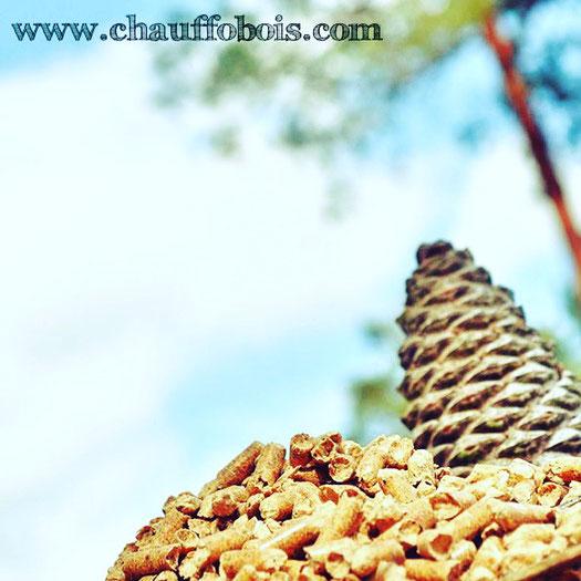 promtion pellet granule de bois