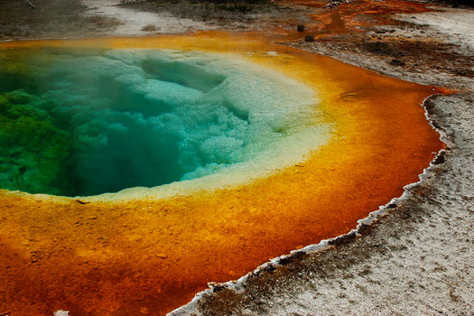Der Morning Glory Pool im Upper Geyser Basin, Yellwostone