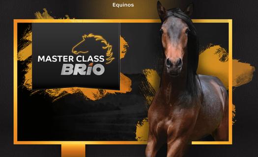 La primera Master Class Brío en streaming es este 11 de marzo - Foto: Italcol