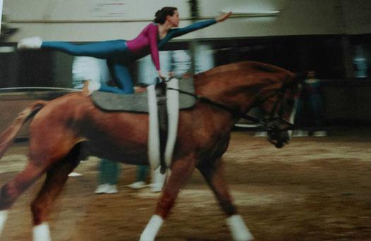 Pferd Pferdesport Voltigieren Turnier Kür Fahne