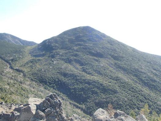 ライチョウ 登山 ガイド