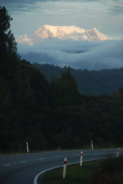 As dusk fell, the snow covered peak of Aoraki/Mt Cook appeared like a beacon, driving us on through the close packed forest (from the Haast-Fox Glacier road).
