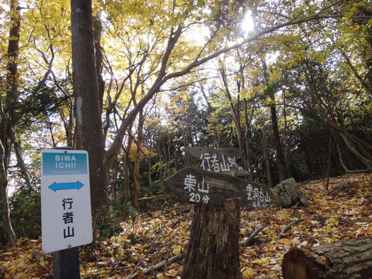 コース上最後のピークとなる行者山