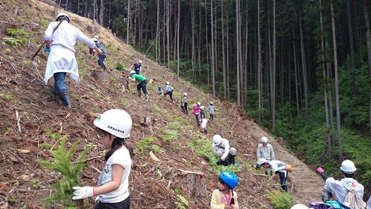 埼玉県さいたま市植林活動参加工務店