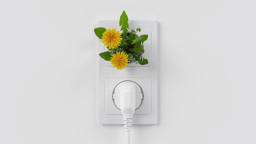Symbolbild: Grüner Strom © Pixabay