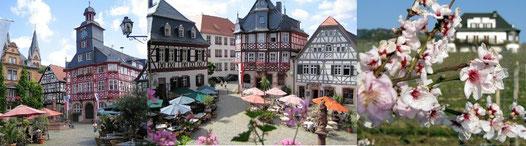 Historischer Marktplatz Heppenheim mit Rathaus. Bild rechts: Rebmuttergarten mit Vinothek.  Bildquellen: Tourismusbüro Heppenheim.