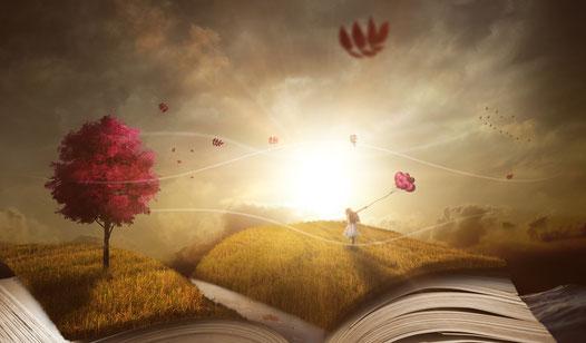 Die einen lesen Bücher, andere leben sie.  - M. Hinrich