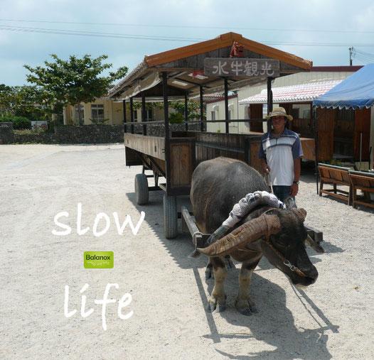Taketomi, Okinawa. Auf der ganzen Insel gibt es keine Autos | Balanox™ Lounge