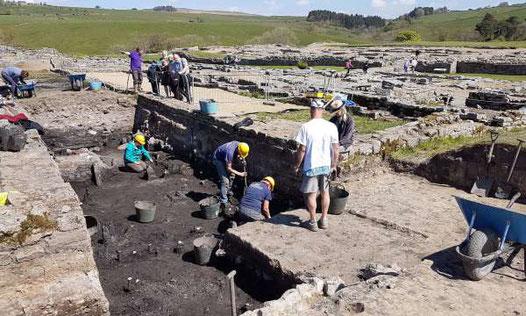 La tranchée de fouilles. Crédit : Vindolanda Trust