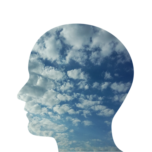 Ce que l'on a appris à propos du système réticulé-activateur, des schémas de pensées et de la conscience.